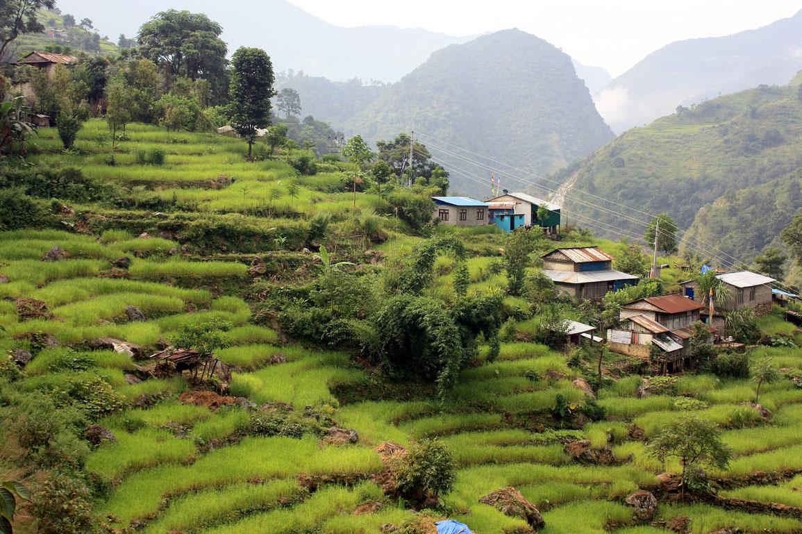 Village de Lili Bhir