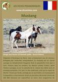 fiche cheval chevaux  identite race mustang origine comportement caractere robe sante