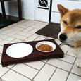 FEEDING TRAY