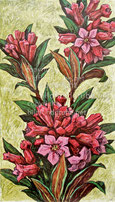 Nr. 0718 Rostblättrige Alpenrose