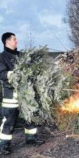 Franz Diedrichs warf immer wieder Bäume ins Feuer.