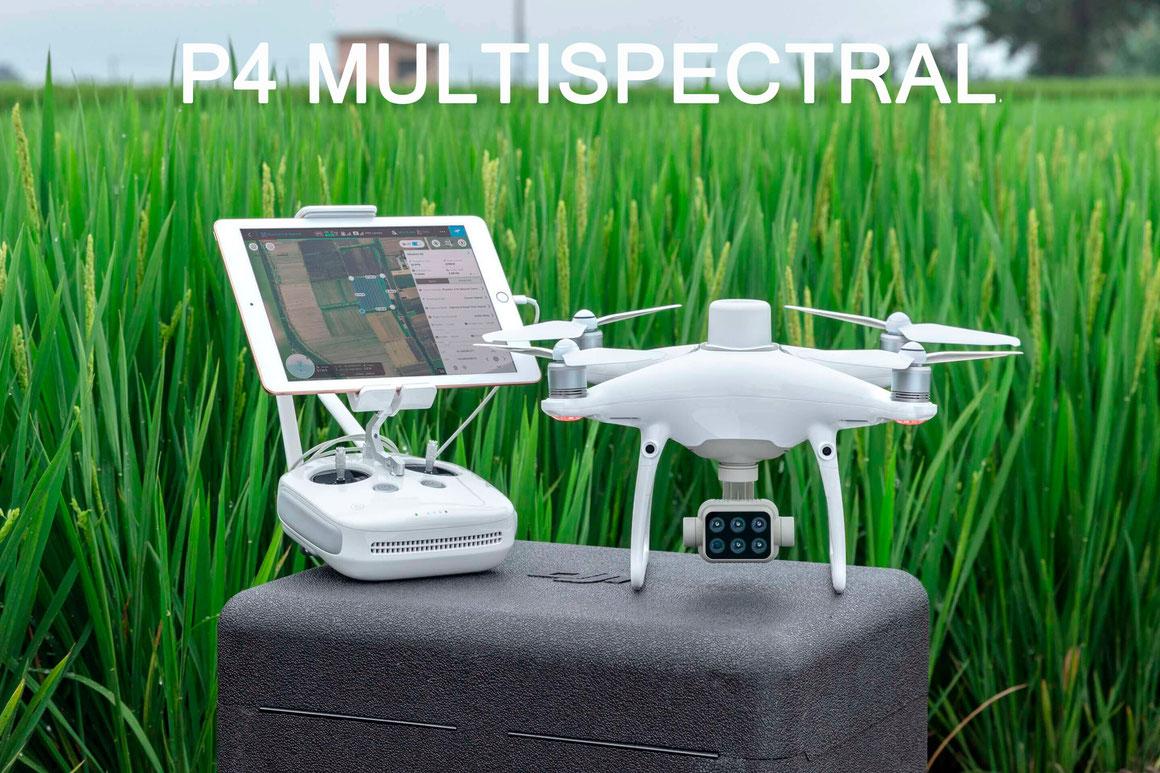 DJI P4 Multiespectral