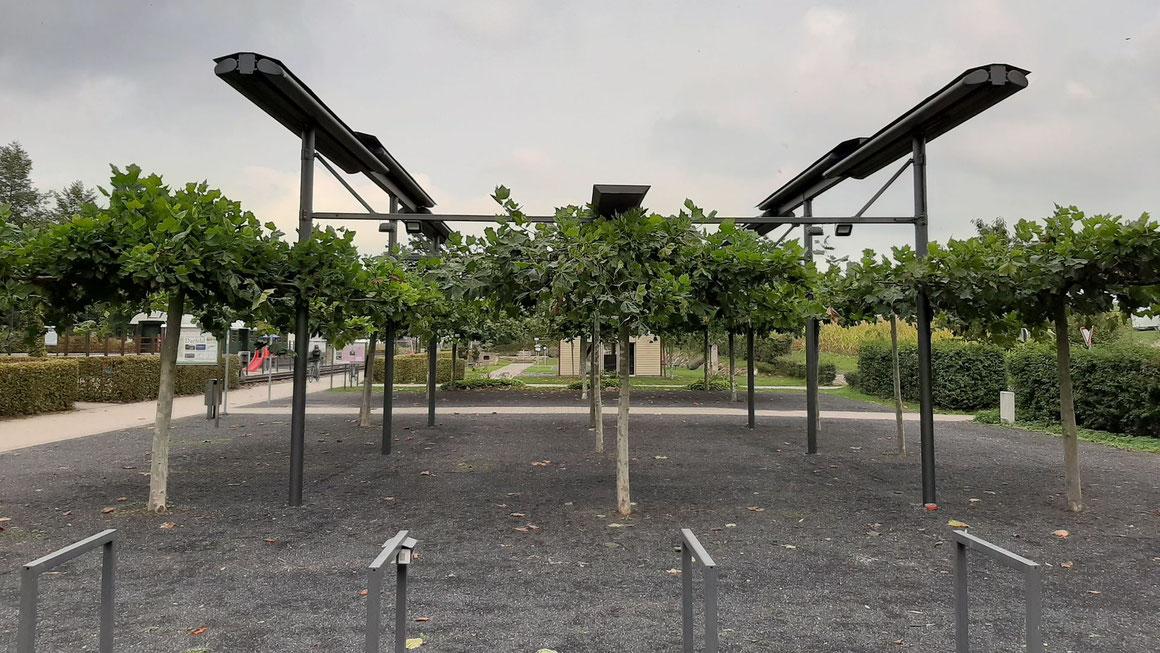Ein temporär ausfahrbares Markisendach soll im Generationenpark Darfeld Schutz vor Regen und damit mehr Planungssicherheit bringen. Foto Heimatverein Darfeld