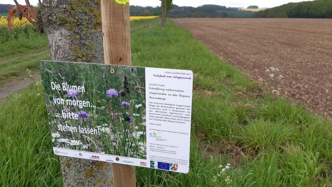 Mit Hinweisschildern hat das Naturschutzzentrum Kreis Coesfeld die Probestrecken gekennzeichnet, an denen die geänderte Pflege getestet wird. Foto: Naturschutzzentrum