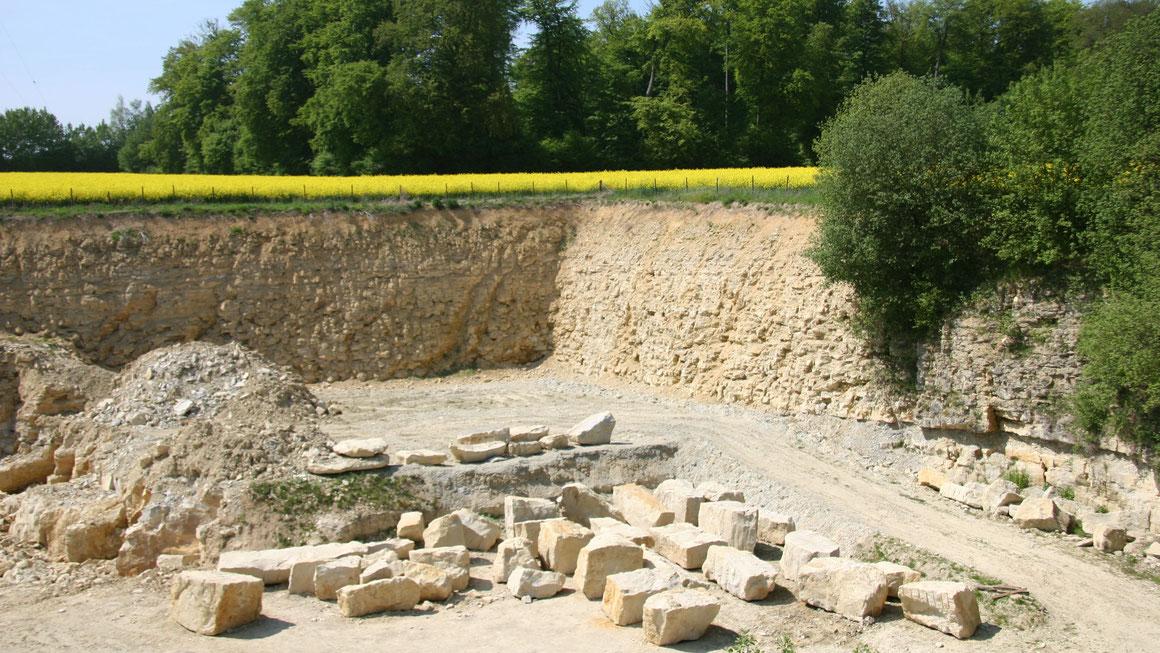 Die Sandstein-Route in den Baumbergen soll mit Hilfe der LEADER-Fördermittel umfassend überarbeitet werden. Foto Josef Räkers