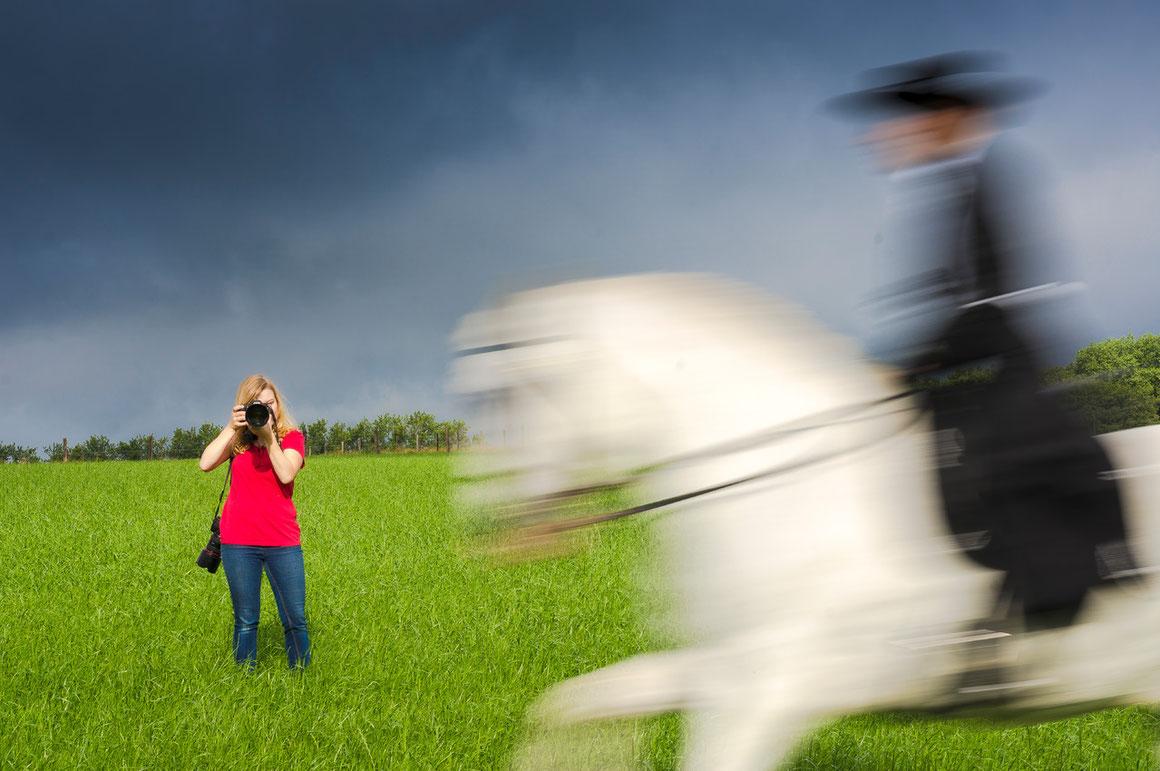 Pferdefotografie Friederike Scheytt