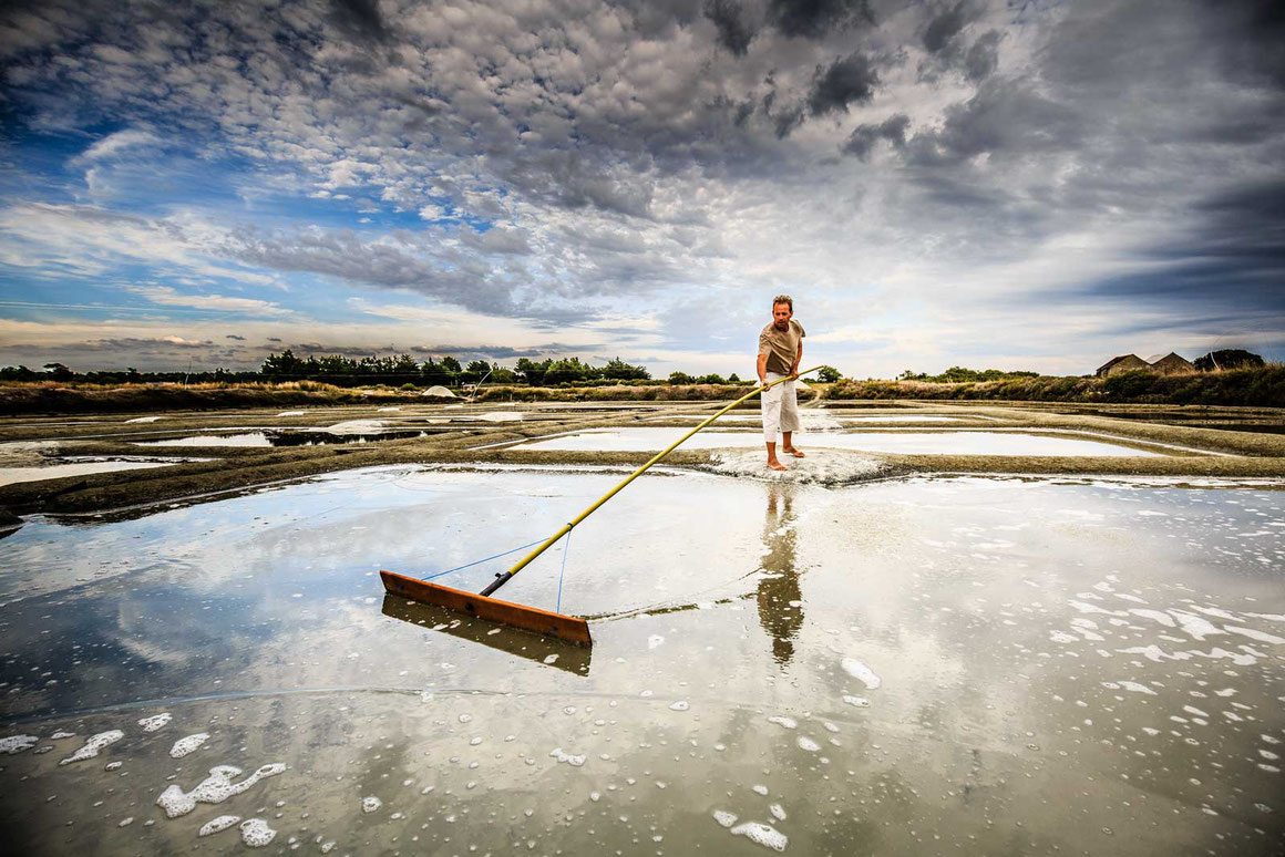Focus sur le métier de paludier dans les marais salants de Guérande, portraits