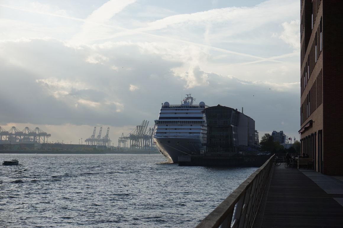 Verbotenen Gegenstände auf Kreuzfahrtschiffen