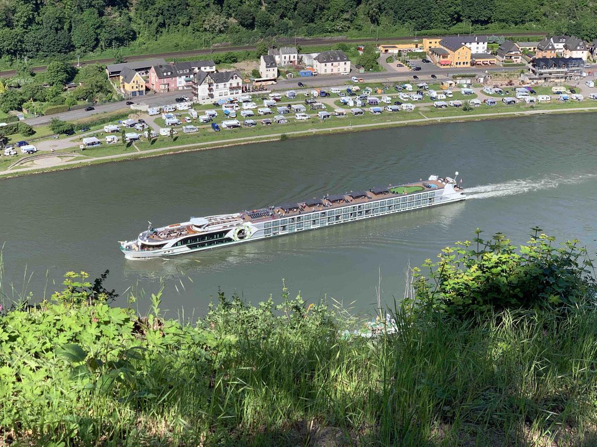 MS INSPIRE Rheingau