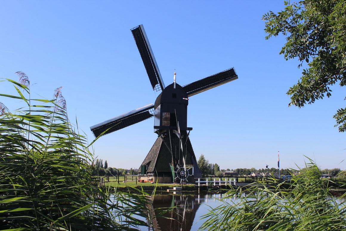 Windmühle Boat bike Tours