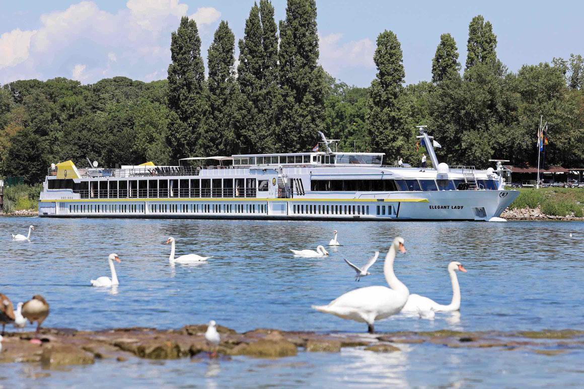 MS Elegant Lady Plantours Kreuzfahrten