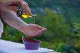 massage-huile biologique-huile essensielles-relaxationgenève