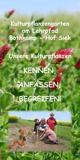 Broschüre: Kulturpflanzen am Lehrpfad-Bothkamp
