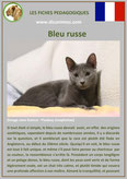 fiche chat pdf race bleu russe comportement caractere origines poil sante couleu