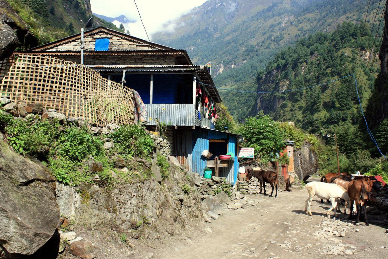 Traversée d'un nouveau petit village