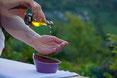 massage-huile-genève-grand-saconnex