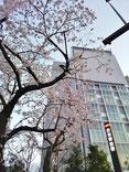 東急さん:なぜか赤坂警察署(笑)