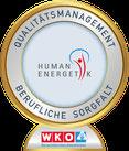 WKO Human Energetik Abzeichen Gold
