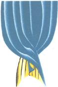 Logo Vorhangatelier Luginbühl, Gerlafingen