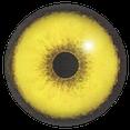 Gelbes Auge  mit schwarzer Pupille