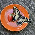 Schwalbenschwanz auf orangem Teller mit Erdbeere