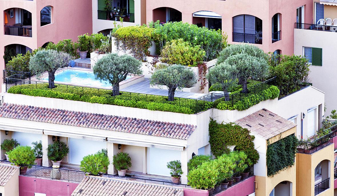 Begrünte große Terrasse mit Bäumen und Sträuchern.