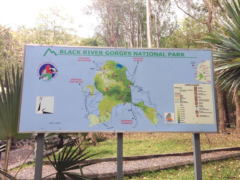 ILE MAURICE : Les gorges de rivière noire