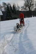 Snow, Yukon, Rainy, Borea
