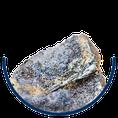 Ferrum phosphoricum Eisen-III-phosphat