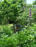 日本ミツバチ巣箱