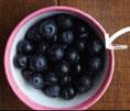 Blaubeeren enthalten Polyphenole gegen Stress