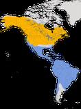 Karte zur Verbreitung des Drosseluferläufers (Actitis macularius)