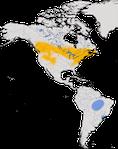 Karte zur Verbreitung der Wilsondrossel (Catharus fuscescens)