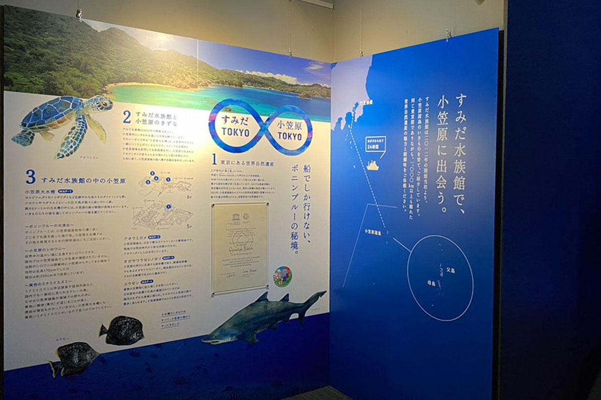 すみだ水族館 東京大水槽パネル