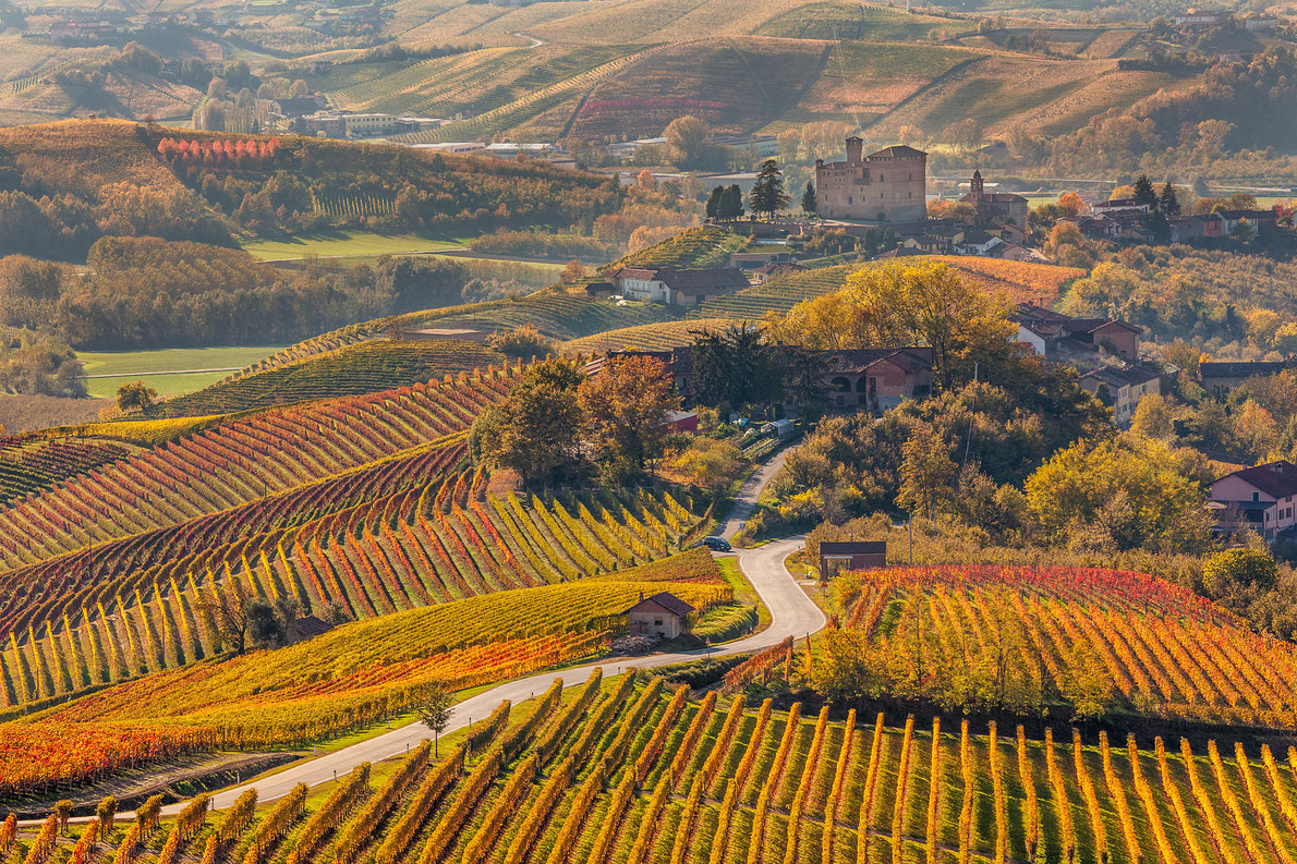 Best wine destinations in Europe - Europe's Best Destinations