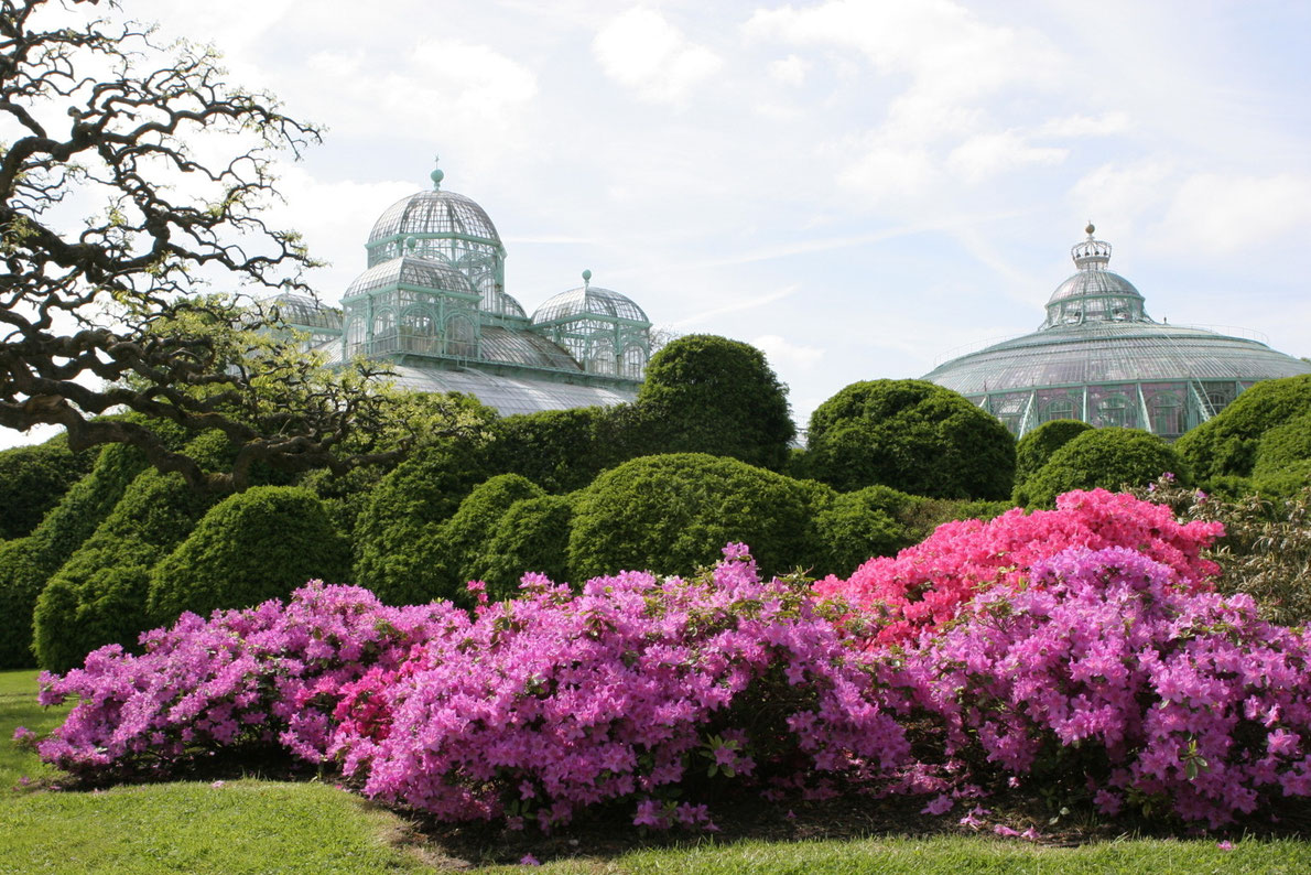 Botanical Garden Laeken - Best Green Houses in Europe - European Best Destinations Copyright bart acke