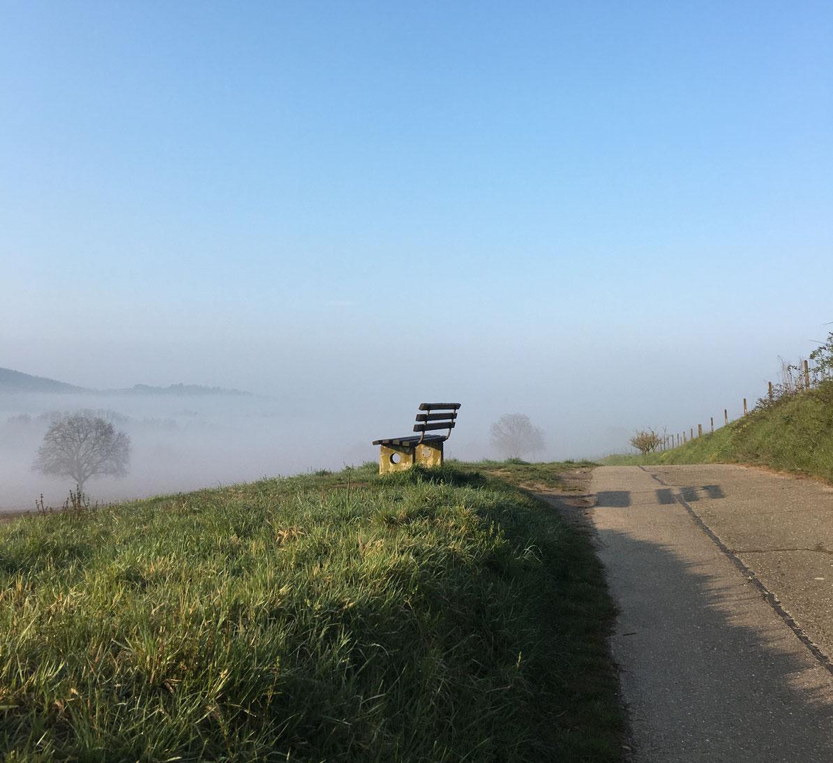 Leere Bank in der Natur auf einer Wiese mit Nebel im Tal und hellblauem Himmel.
