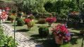 Gärten im Sommer 2013