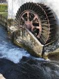 le moulin à coquins en Meuse près de Clermont en Argonne