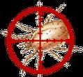 Vogelmilbe, Akarizid F46, Akarizid EC und Natur Akarizid EC für BIO Betriebe