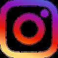 German Rex Cat Breeder Westerfelds Instagram