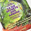 Vie secrète des arbres en forêt du Bager d'Oloron avec l'association ACCOB