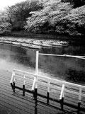 東京写真 過ぎ去りし日々 時の旅人