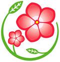 区の花 ニチニチソウ