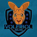 CLUB DE VOLEIBOL AGLAIA
