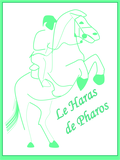 Haras de Pharos
