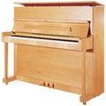 ペトロフピアノ P118 P1