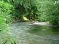 Ruisseau la Gardonnette