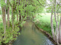 Ruisseau La Louyre