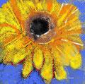 Bachblüten ASCA emrindexcarolpetrigbilder Komplementärtherapie Naturheilpraktikerin Kraft Freude EMR ASCA google yellow local.ch Carol Petrig Küssnacht am Rigi Meggen Praxis Bachblüten  Gesundheit